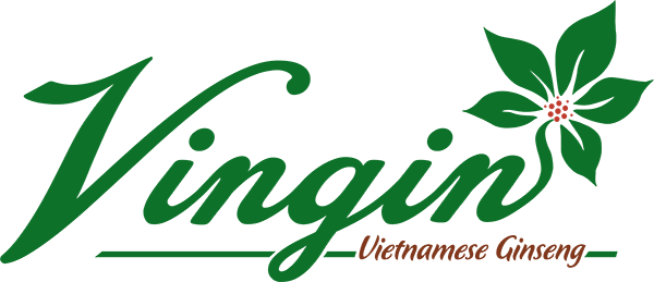 Công Ty Cổ Phần Vingin | Chế Phẩm Sâm Ngọc Linh KonTum